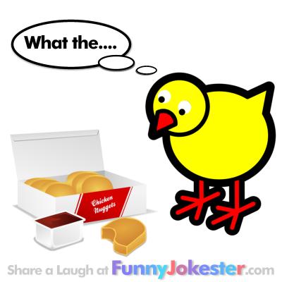 Five Funny Chicken Jokes