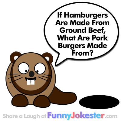 Bad Jokes at Funny Jokester