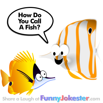 New Funny Fish Joke for Kids
