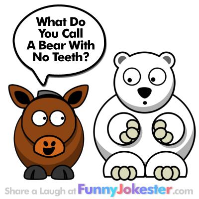 Funny Bear Joke