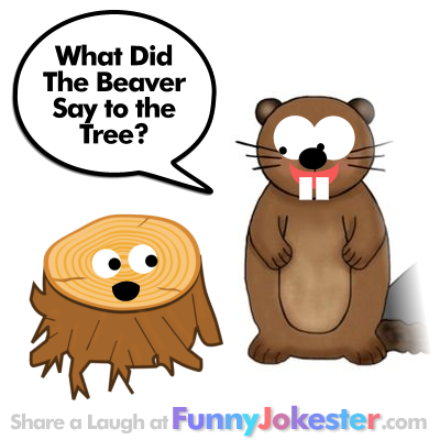 Funny Beaver Joke