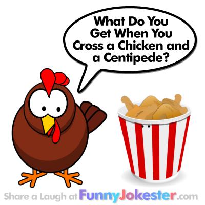 Kids Funny Chicken Joke