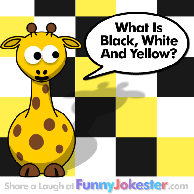 Funny Colors Joke