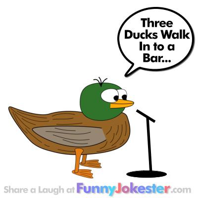 Funny Duck Joke