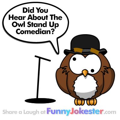 Funny Owl Joke