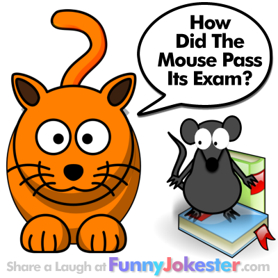 Funny Mouse Joke for Kids