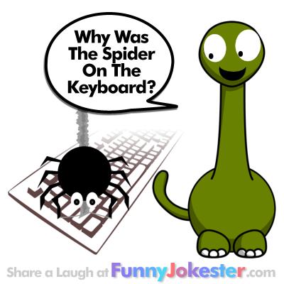 New Funny Spider Joke Halloween Jokes