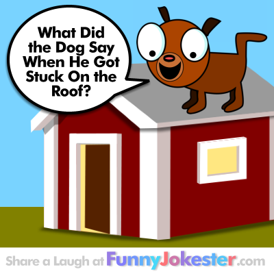 Original Funny Dog Joke