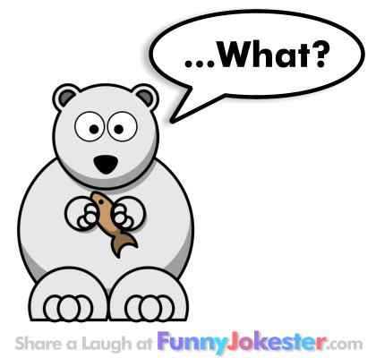 Funny Polar Bear Joke