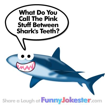 Funny Shark Joke for kids