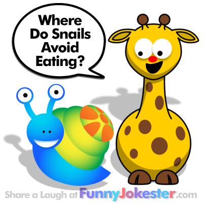 Snail Joke for Kids