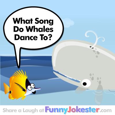 Whale of A Joke - Funny Whale Joke