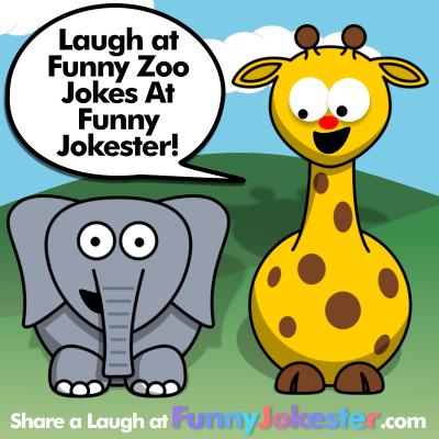 Zoo Jokes
