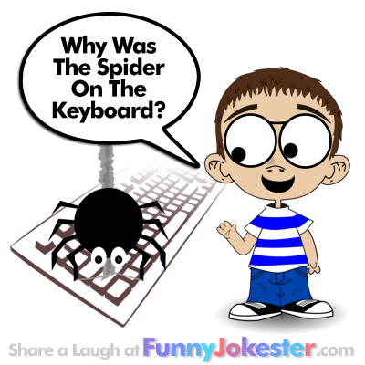Halloween Spider Jokes.Why Was The Spider On The Keyboard